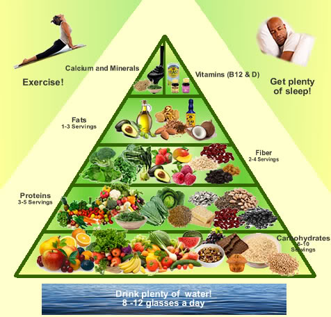 the vegan diet benefits